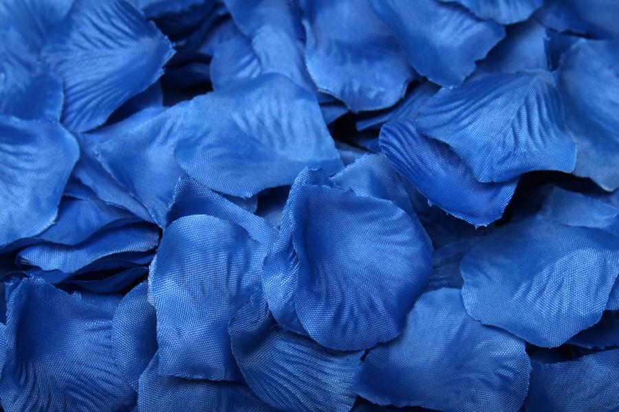 Лепестки роз темно-синие