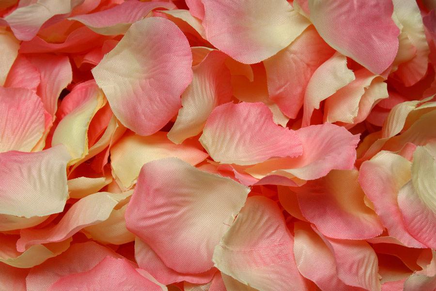 Лепестки Розово-айвори